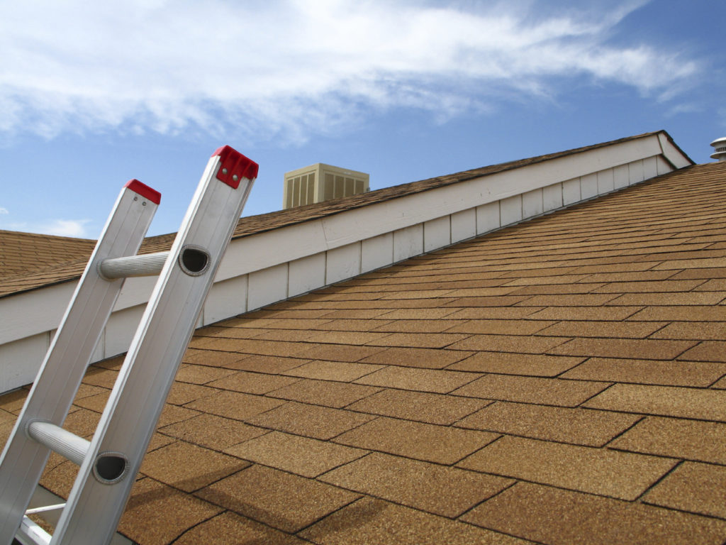 Roofing professionals in dallas/fort worth tx